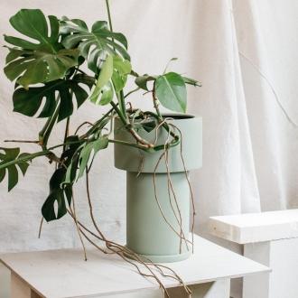 light green indoor plant pot design the plant society
